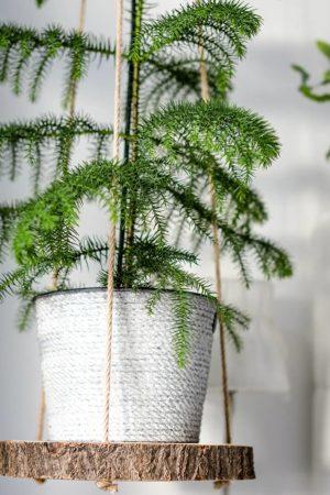 DIY Hängeregal für eine urbane Dekoration