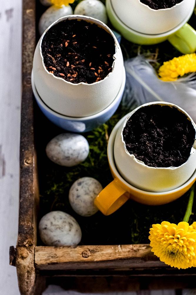 Kräutergarten in Eierschalen zum verschenken an Ostern
