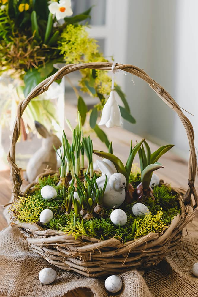 Zu Ostern einen Korb bepflanzen